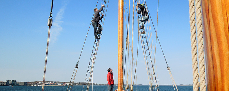 DIScovery Trip, Tall Ship Sailing