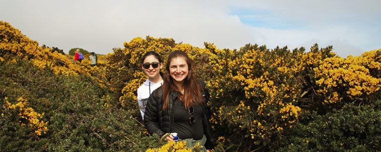 Summer study tour to Belfast and Dublin, Cross-Cultural Communication, DIS Copenhagen