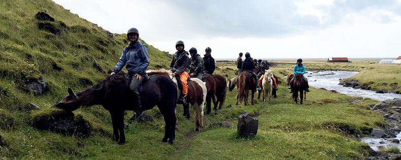 Weeklong study tour in Iceland, World of Vikings, DIS Stockholm