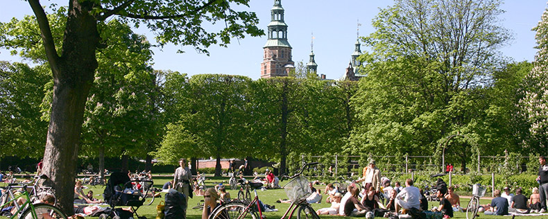 DIS Summer, Mix and Match between Copenhagen and Stockholm