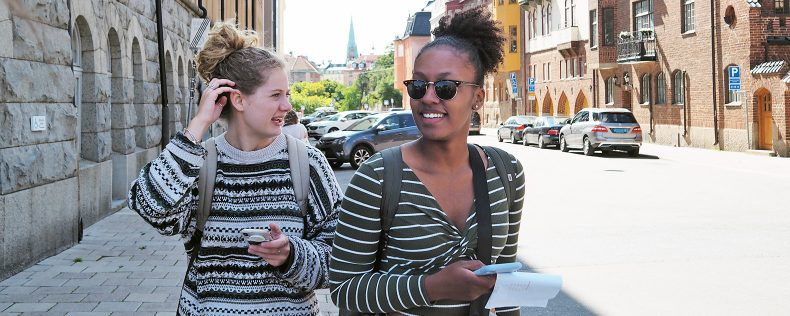 DIS Summer, Stockholm, Migration in the City