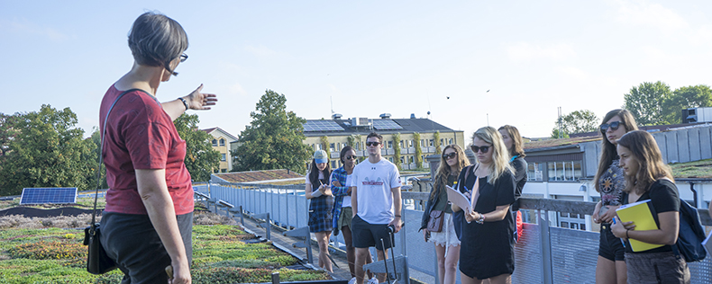 DIS Summer Course in Copenhagen, Sustainable Development in Northern Europe, Study Tour to Norway