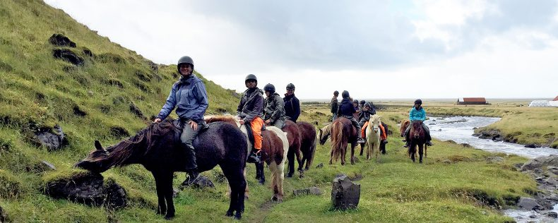 Emigration, Immigration, and Integration: The Nordic Experience, Study Tour to Reykjavik