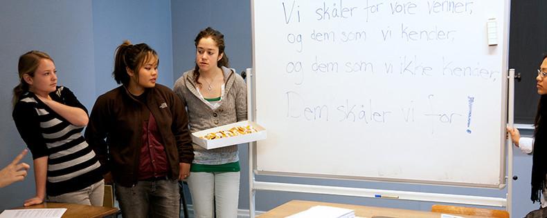 Danish Language and Culture: Level II, Semester Course