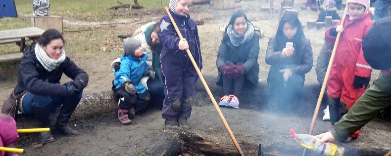 DIS Copenhagen, Child Development in Scandinavia, Core Course