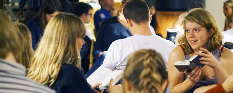 Folkehøjskole, DIS housing opportunity
