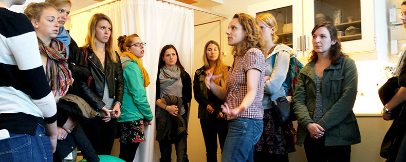 Pregnancy, Birth, and Infancy in Denmark, Semester Course