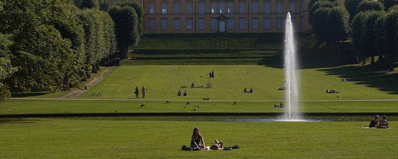 Urban Ecology, semester program at DIS Copenhagen