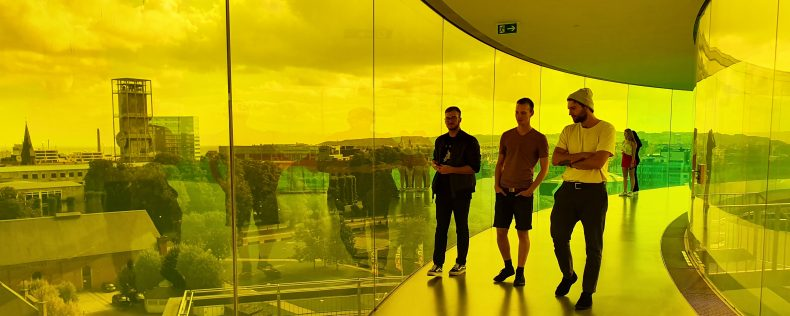DIS Copenhagen, Artificial Neural Networks and Deep Learning, Study Tour to Western Denmark