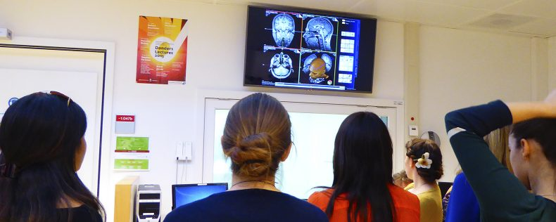 DIS Copenhagen Neuroplasticity Elective Course