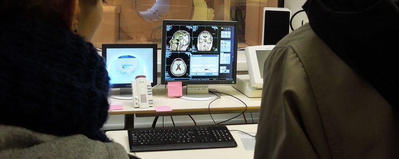 Research Assistant:Investigation of Spatial Navigation in the Developing Human and Animal Brain