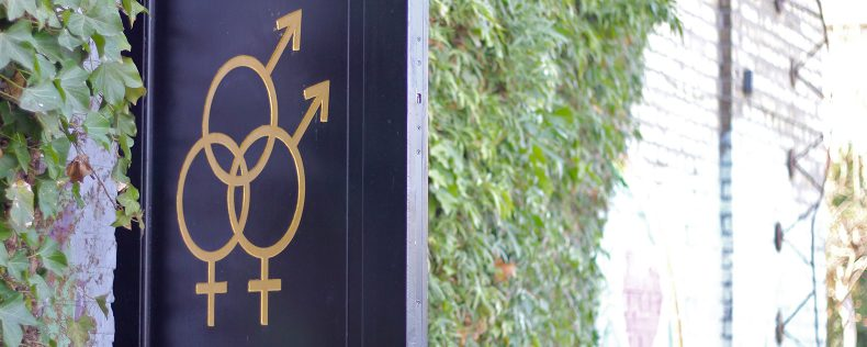 Gender, Equality and Sexuality in Scandinavia Course at DIS Stockholm