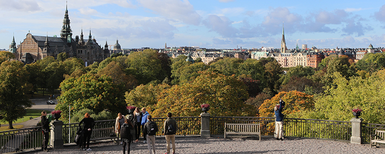 History of Sweden in Europe and the World, elective course at DIS Stockholm