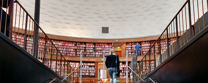 Libraries in Stockholm, DIS Stockholm