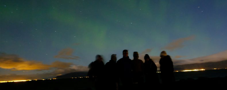 DIS Stockholm, Vikings & Power Program
