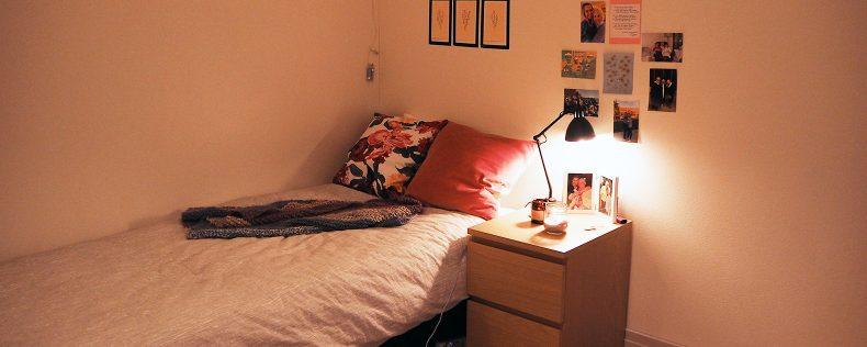DIS Stockholm Housing, Folkhogskola Boson