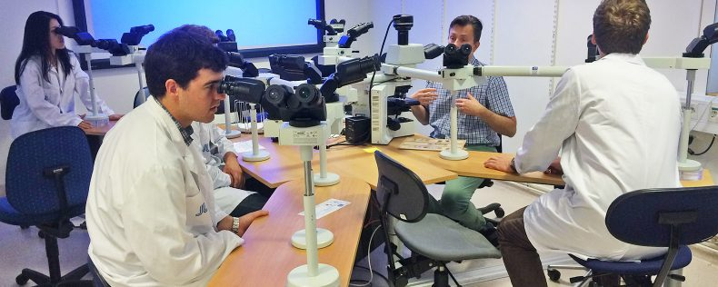 Biomedical Engineering in Scandinavia, Short Study Tour to Sweden, DIS Stockholm