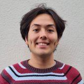 DIS Stockholm Student Blogger - Leaf